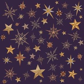 Steampunk Stars - purple