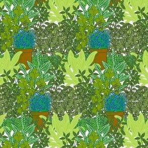 Herb garden [small]