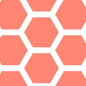 Retro New Mexico ~  Honeycomb