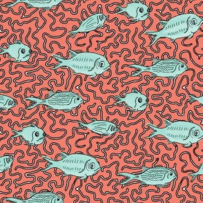 Mint Fishes on Coral