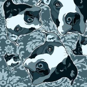 Blue Dog Special