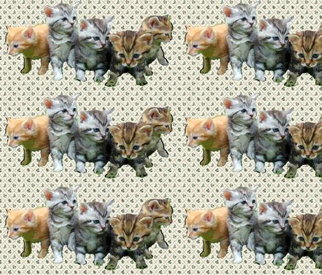 kittens fabric by dogdaze_ on Spoonflower - custom fabric