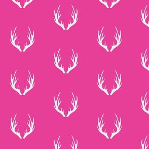 Antlers Fuchsia