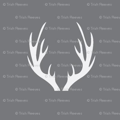 Antlers Grey