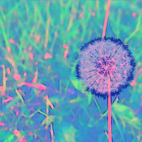 earth_daisy_neonblu