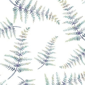 watercolor fern natural on white
