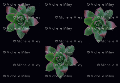 Spoonflowerlarge_preview