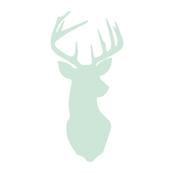 Multi Buck Head // Northern Lights