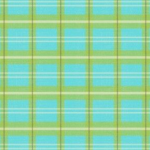 NW Plaid Blue