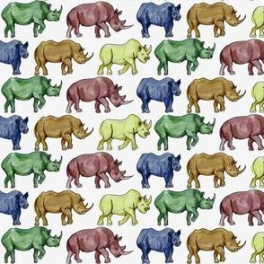 Rainbow Rhinos