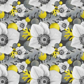 gray anemone