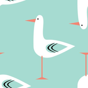 modern seagull