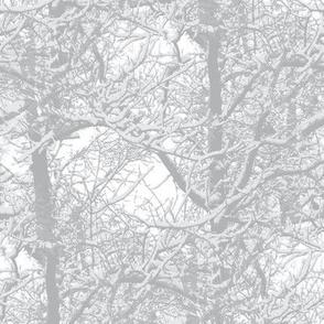 Low Volume Trees