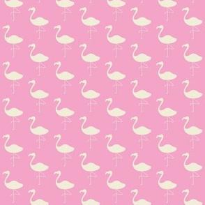 Pink Flamingo - Cream on Pink