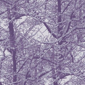 Purple snow trees