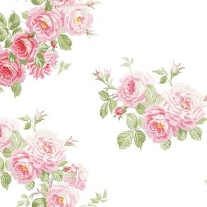 MAYDAY Summer Roses white