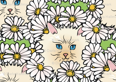 kittyflowers