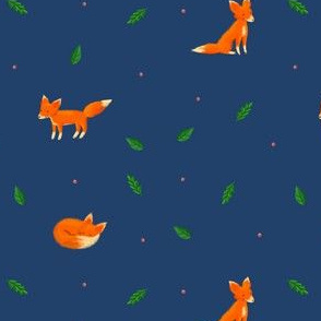 Little Fuzzy Foxes