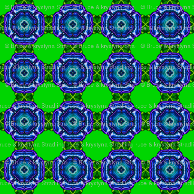 Green with Blue Flower