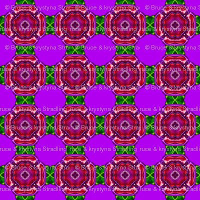 Purple with Purple Flower