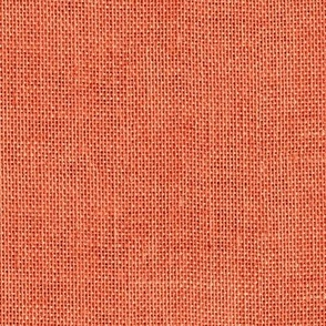 apple red burlap