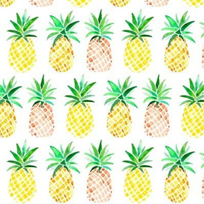 Orange & Yellow Pineapples