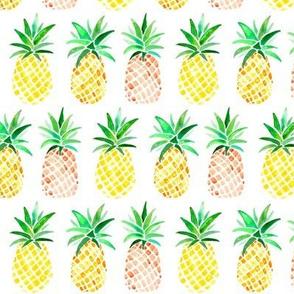 Orange & Yellow Pineapples