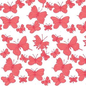 butterflies summer pink on white