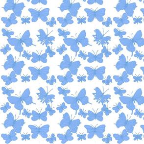 butterflies blue on white