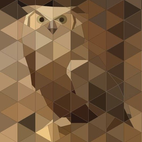 Capture_owl_high_res