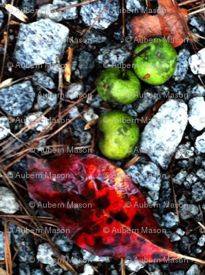 Crabapples_preview