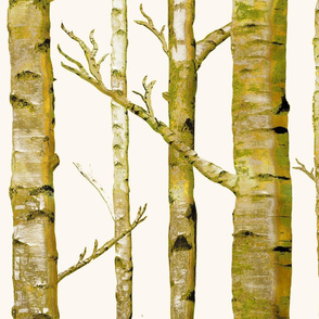 Birch Grove in Moss/Metallic Gold