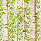 Rrrrrspringbirches_shop_thumb