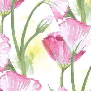 Watercolor Eustomas Floral Pattern