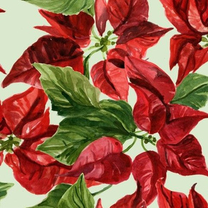 Holiday Poinsettias Watercolor Floral