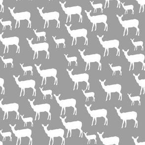 little deer grey