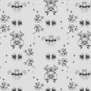 cotton_detail_web