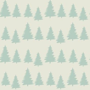 little fir ©2015 Jill Bull
