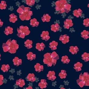 Pink Roses on Navy