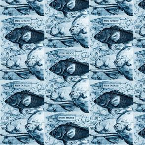 fishheadsblue