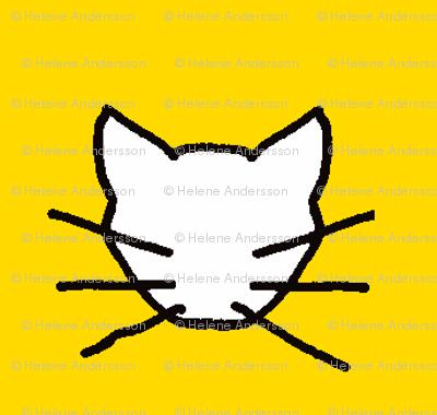 White cat on yellow