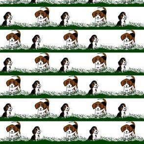 Beagles2