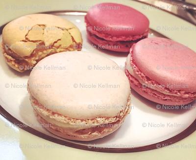 macaron sweets