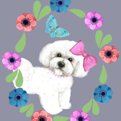 Bichons in the flower Garden
