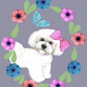 Bichon Frise  flower Garden