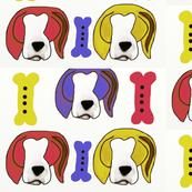 Primary beagle