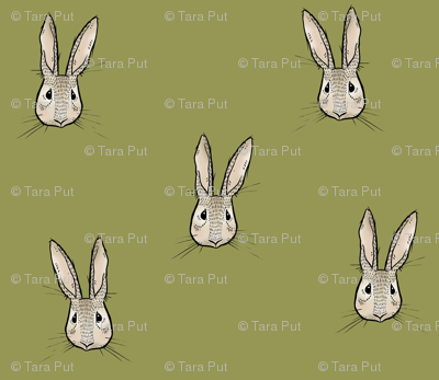Sweet Rabbit on Olive