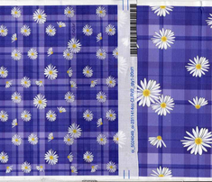R14_purple_plaid_daisy4b2_small_comment_563384_thumb