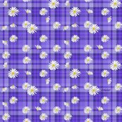 R14_purple_plaid_daisy4b2_small_shop_thumb