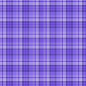 Rr14_purple_plaid_small_shop_thumb
